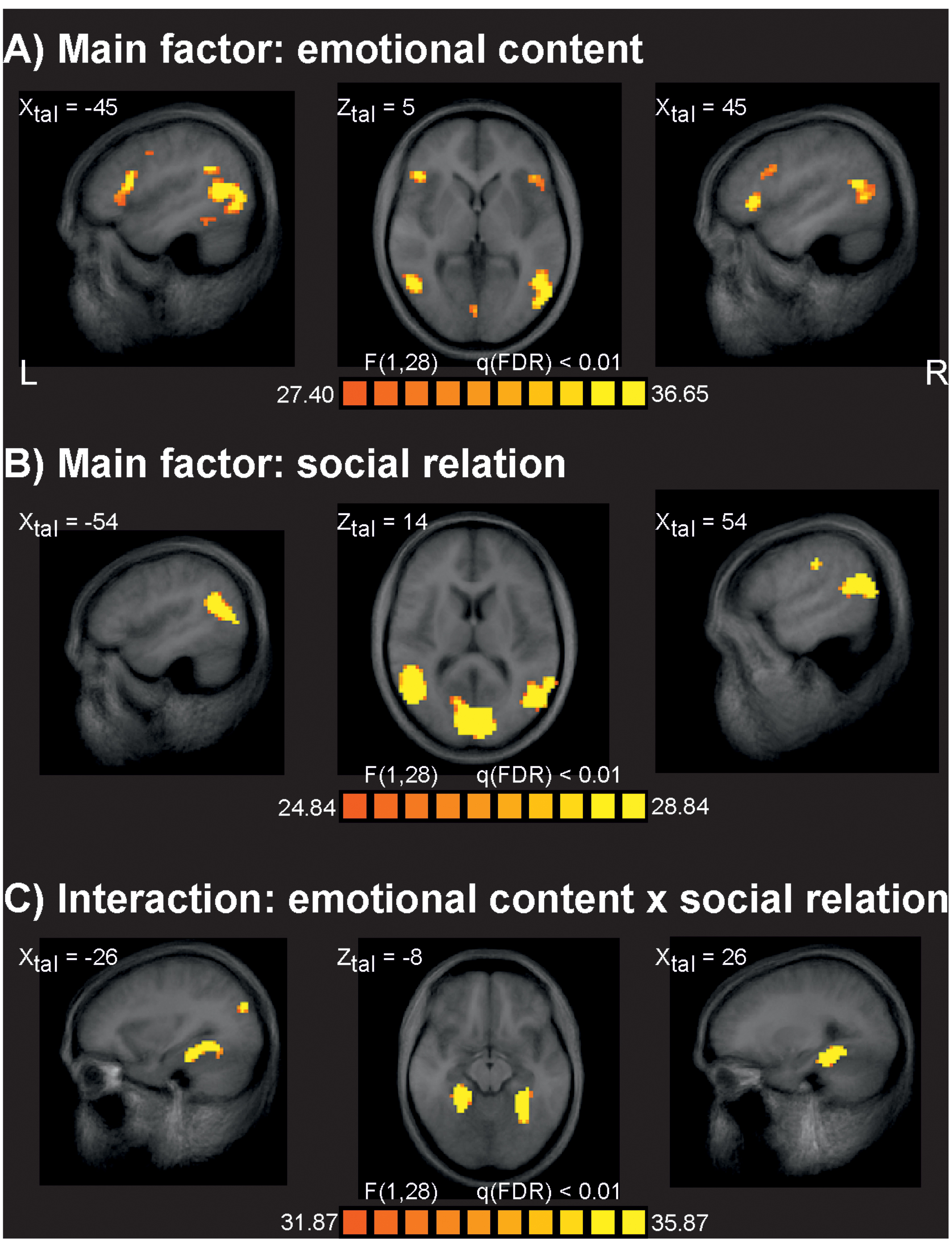 Frontiers lack of evidence that neural empathic responses are frontiersin publicscrutiny Image collections