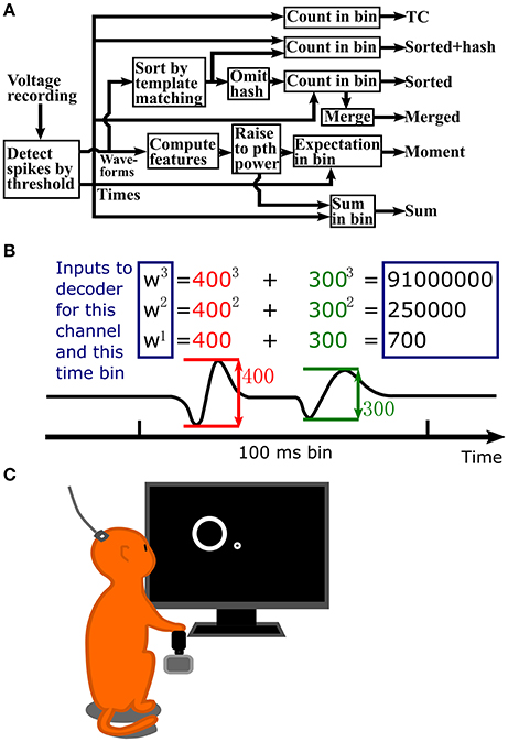 Frontiers   Sums of Spike Waveform Features for Motor Decoding