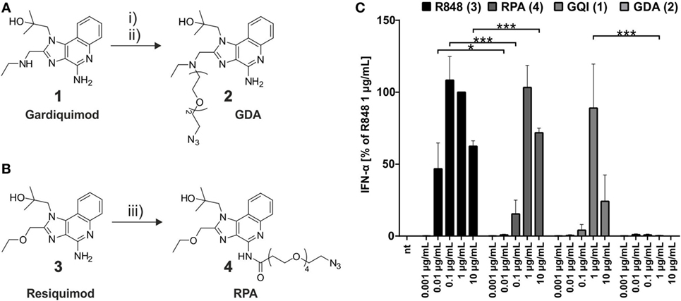 Frontiers | Bioconjugation of Small Molecules to RNA Impedes Its