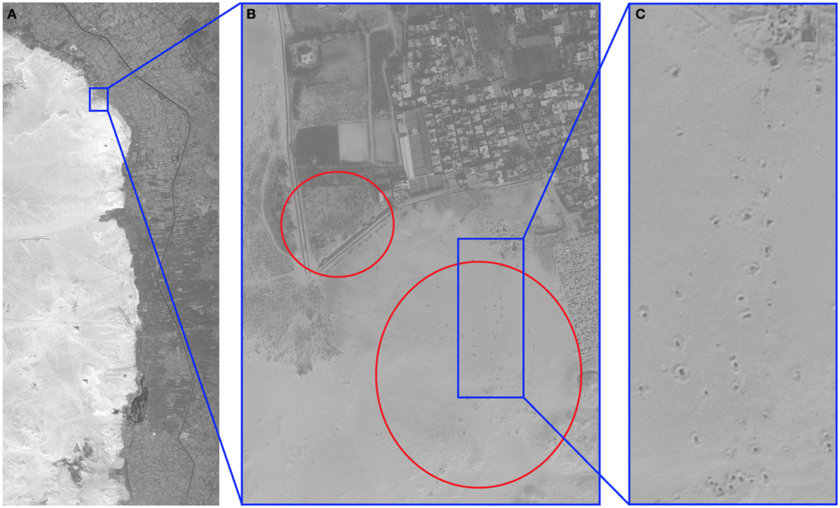 Frontiers | Algorithmic Identification of Looted Archaeological