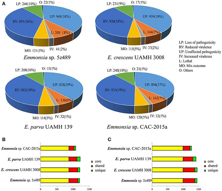 Genes In Pathogenicity Island Sapi Box S Aureus Enterotoxin Tst
