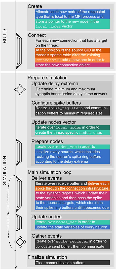 Frontiers | The NEST Dry-Run Mode: Efficient Dynamic Analysis of