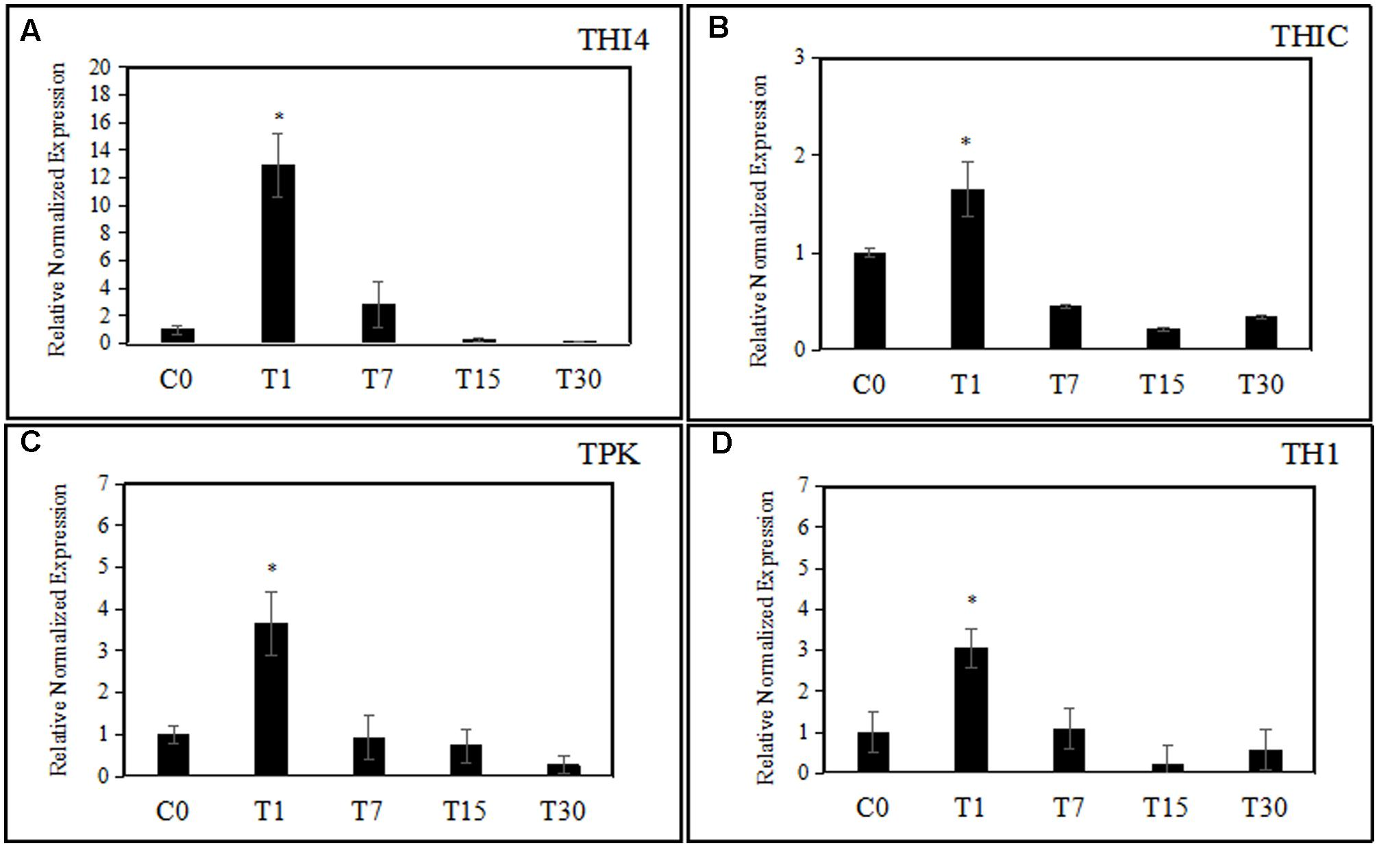 Frontiers | Enhancement of Thiamine Biosynthesis in Oil Palm