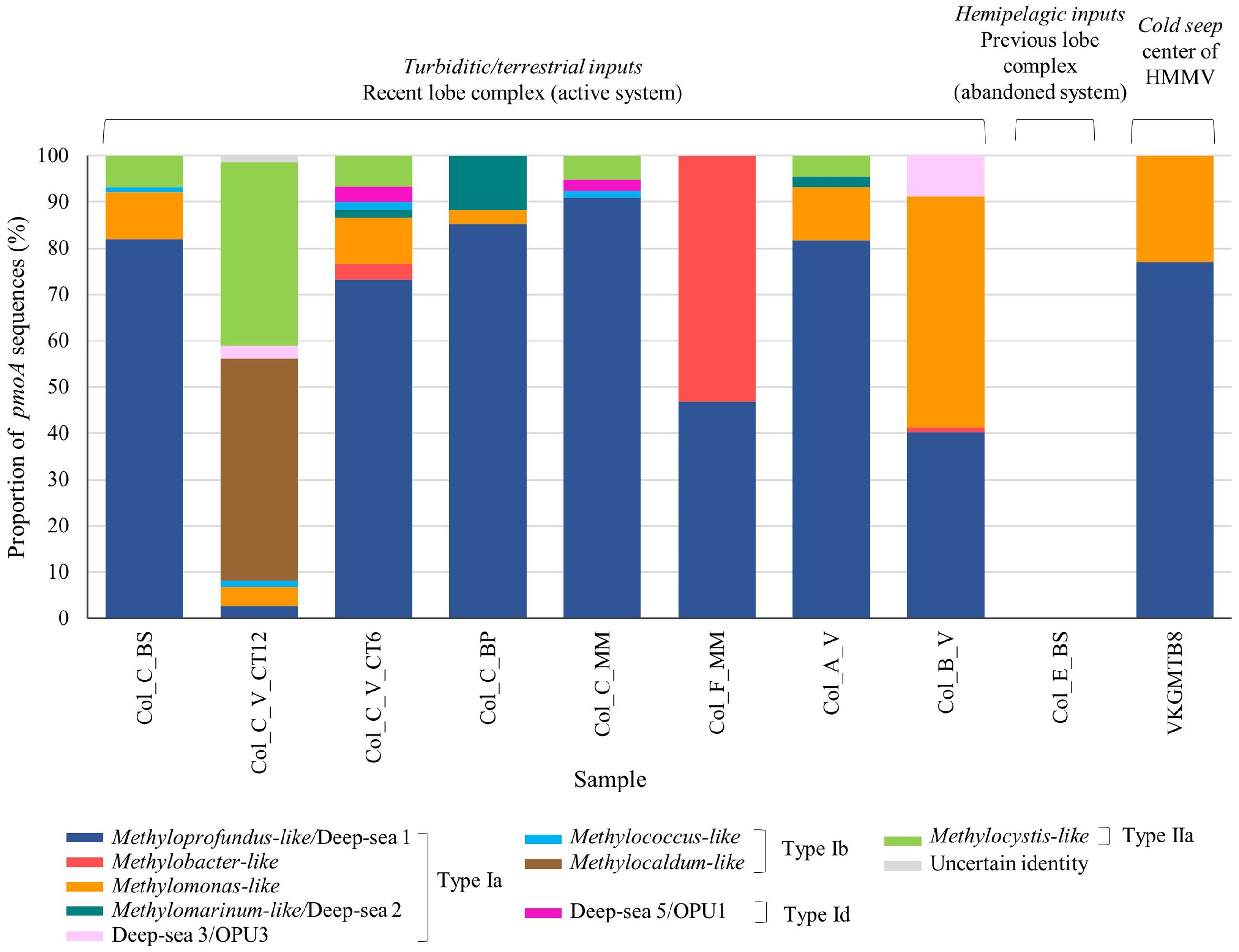 Frontiers | Relative Abundance and Diversity of Bacterial
