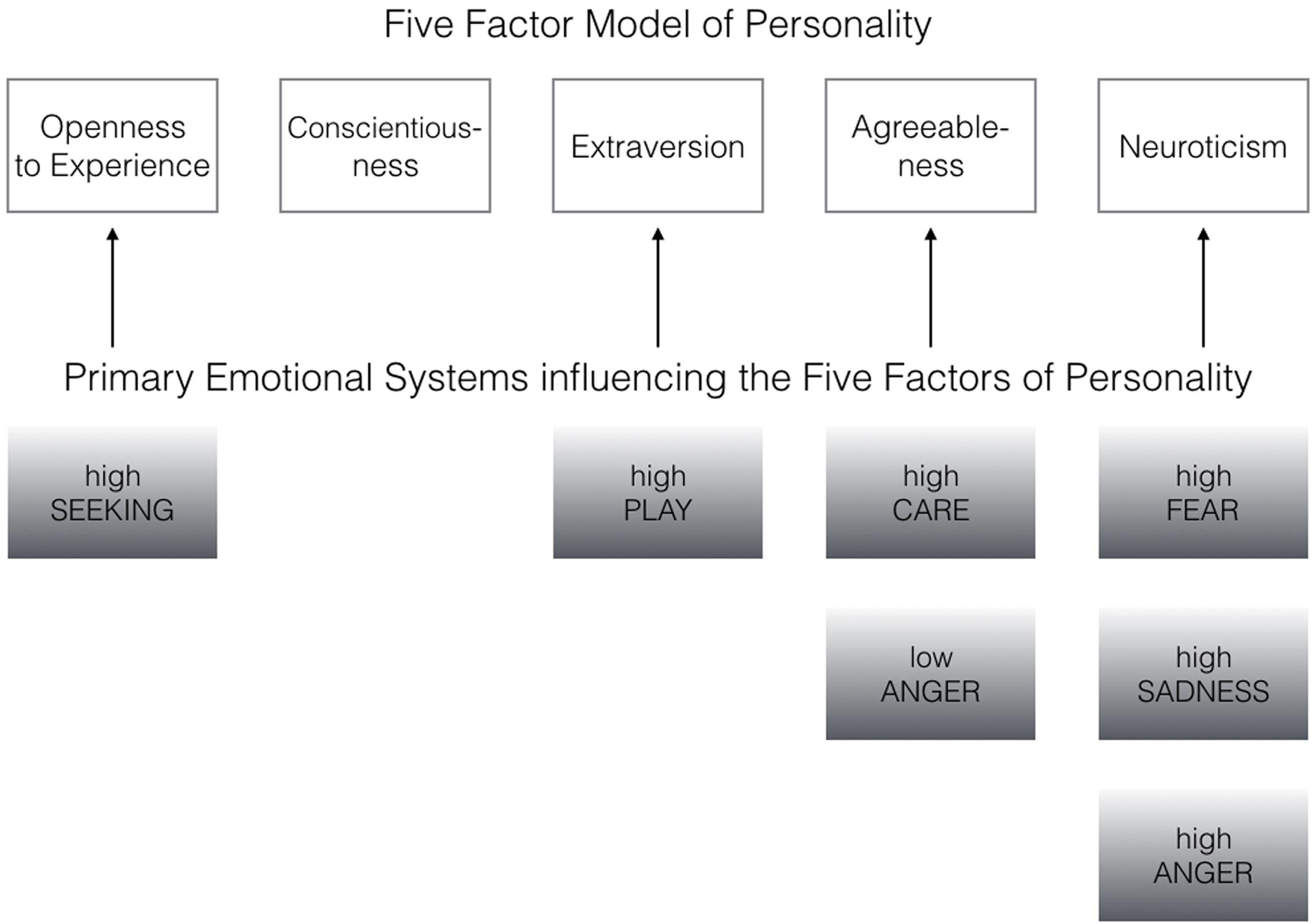 affective personality and primary emotion systems Neurologizing the psychology of affects: how appraisal-based constructivism and basic  before discussing why my affective neuroscience emotion systems.