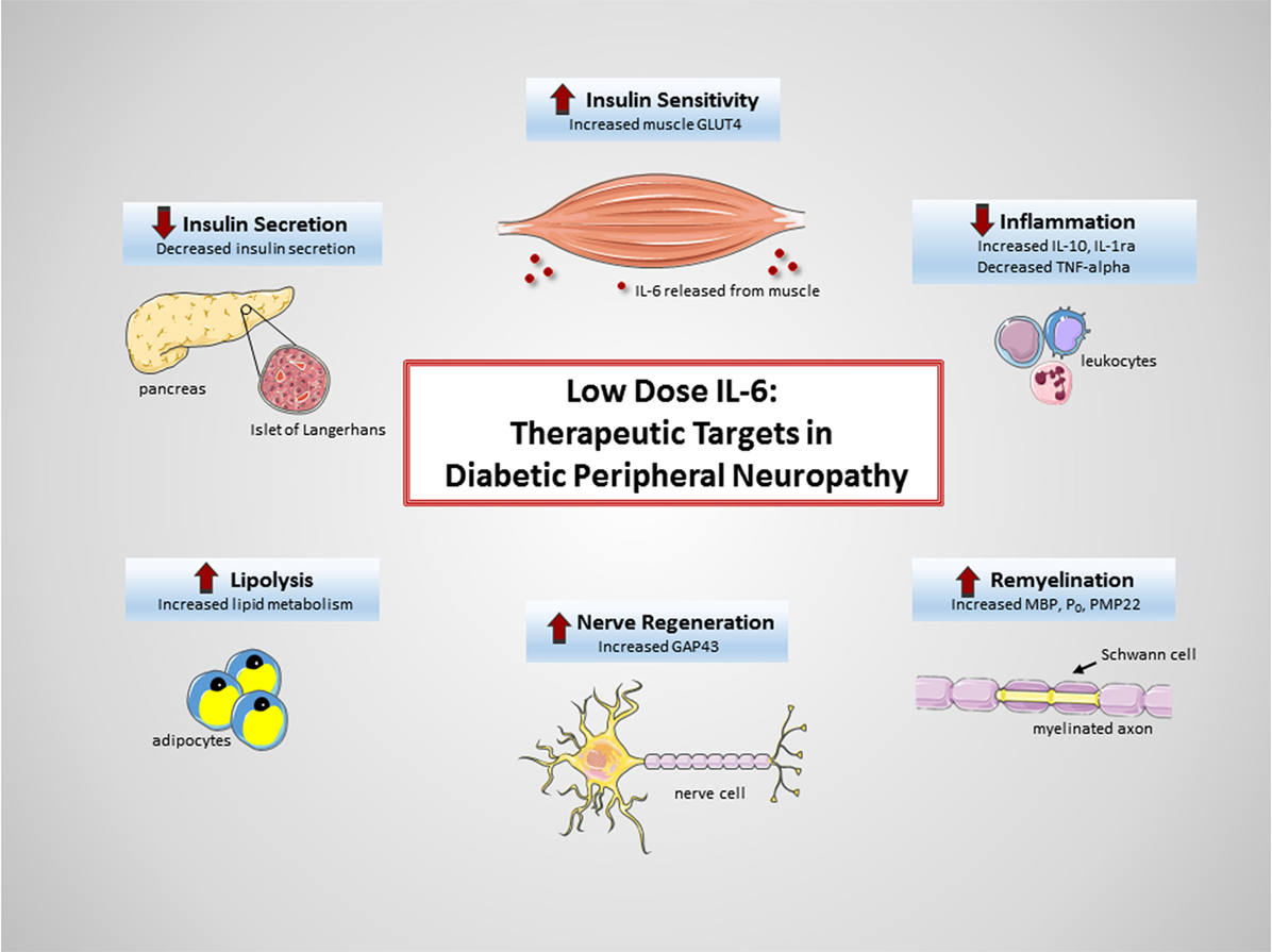 ADA Releases New Guidelines on Managing Diabetic Peripheral Neuropathy