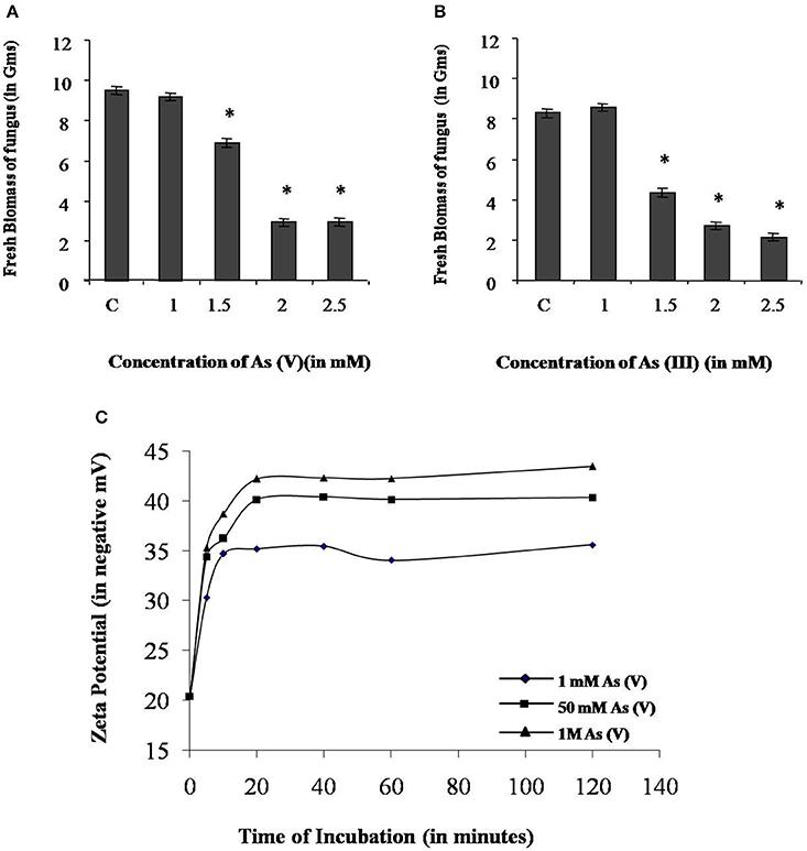 Frontiers   Endophytic Fungi Piriformospora indica Mediated