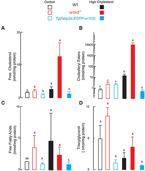 The mechanism of dietary cholesterol effects on lipids metabolism in rats