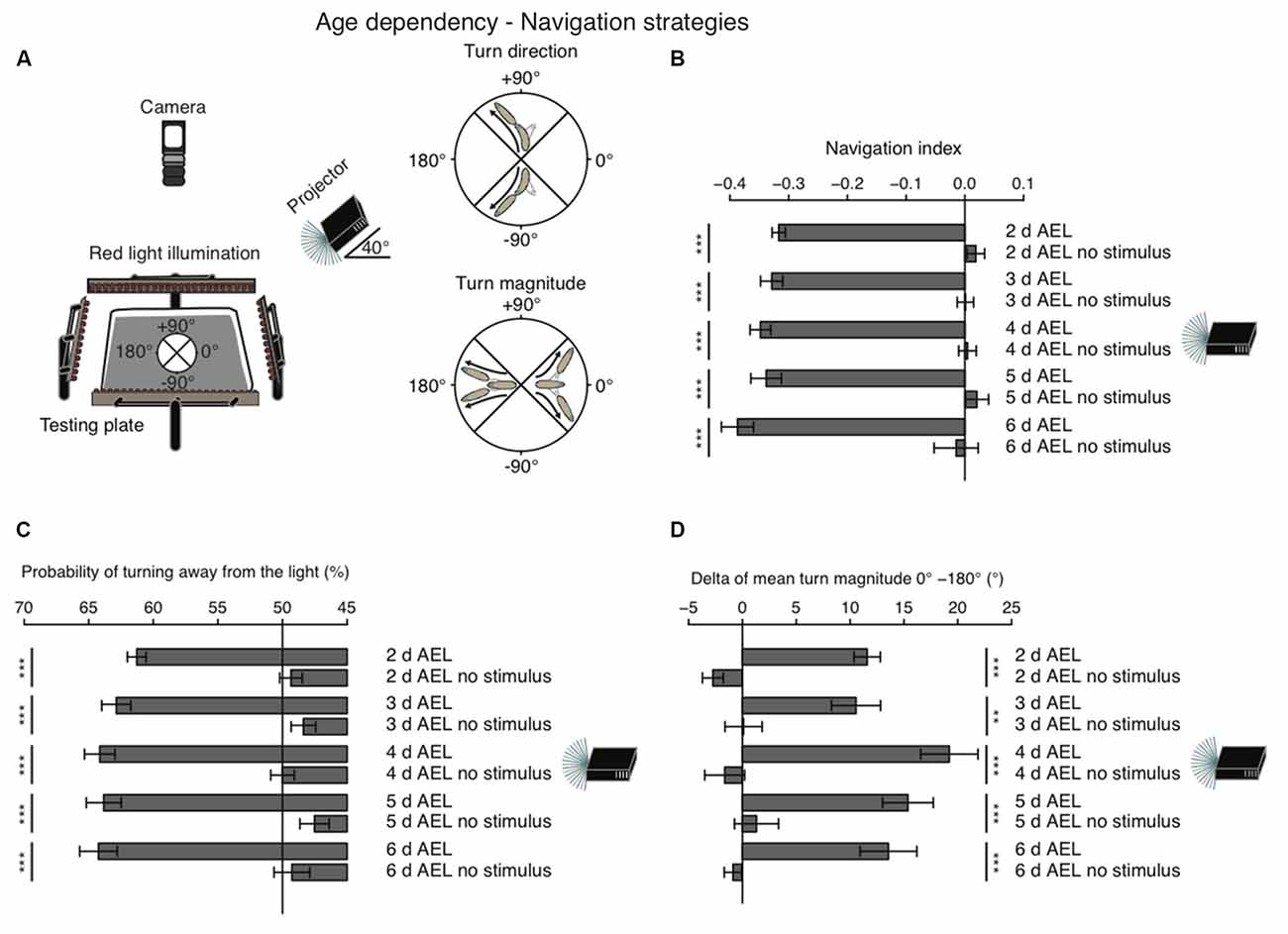 Frontiers | Age- and Wavelength-Dependency of Drosophila Larval ...