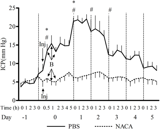Frontiers   Protective Effect of N-Acetylcysteine Amide on Blast