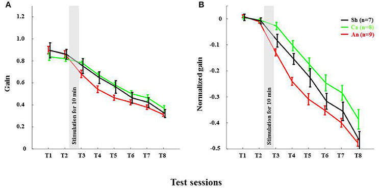 Frontiers   Impairment of Long-Term Plasticity of Cerebellar ... on