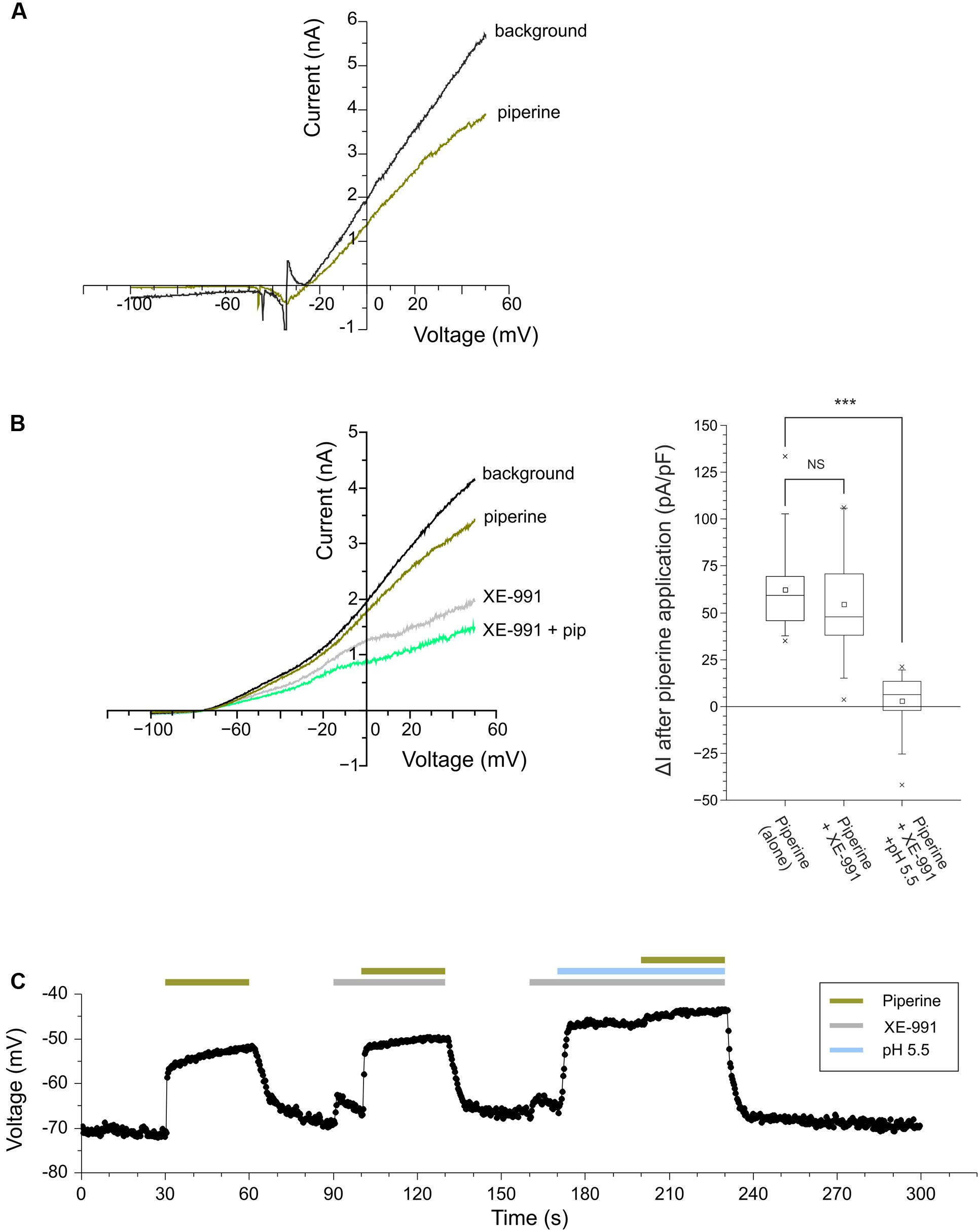 Frontiers | The Effect of Pungent and Tingling Compounds from Piper