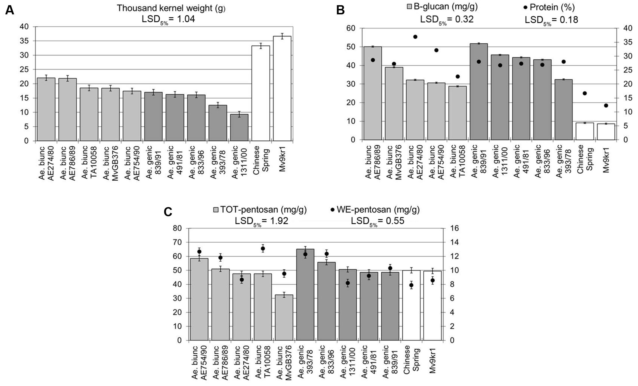 Frontiers   Addition of Aegilops U and M Chromosomes Affects Protein ...