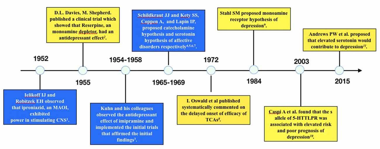 Persuasive essay on antidepressants
