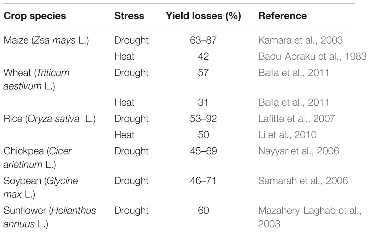 Frontiers | Crop Production under Drought and Heat Stress: Plant