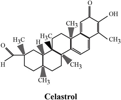 Celastrol