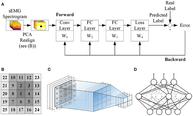 Frontiers | Self-Recalibrating Surface EMG Pattern Recognition for