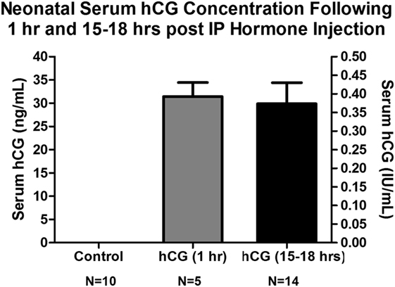 Frontiers | Pretreatment with Human Chorionic Gonadotropin Protects