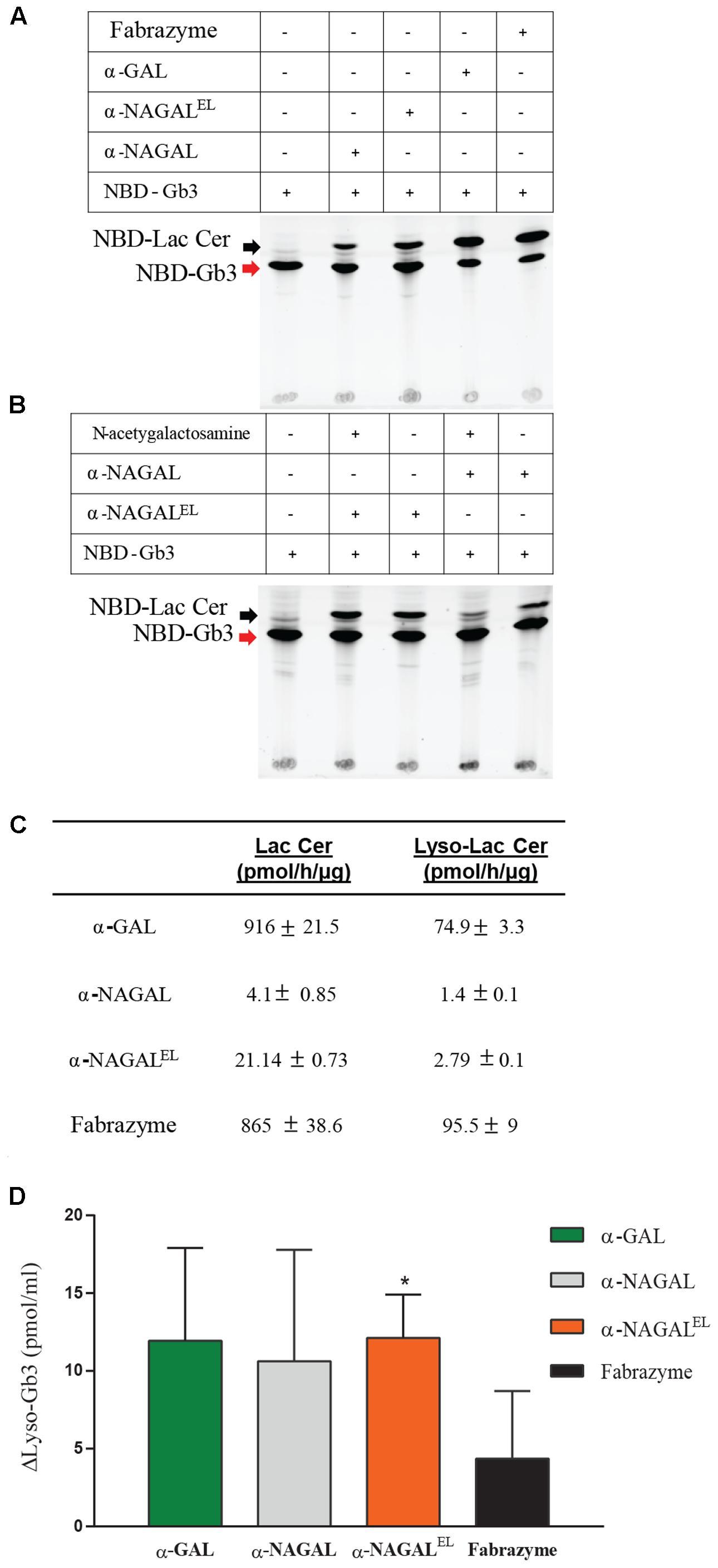 Natural Human Alpha  Antitrypsin Protein Abcham