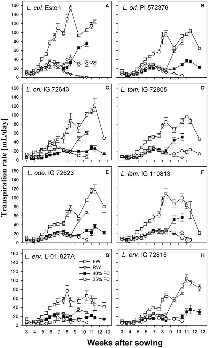 Frontiers   Evaluation of Wild Lentil Species as Genetic