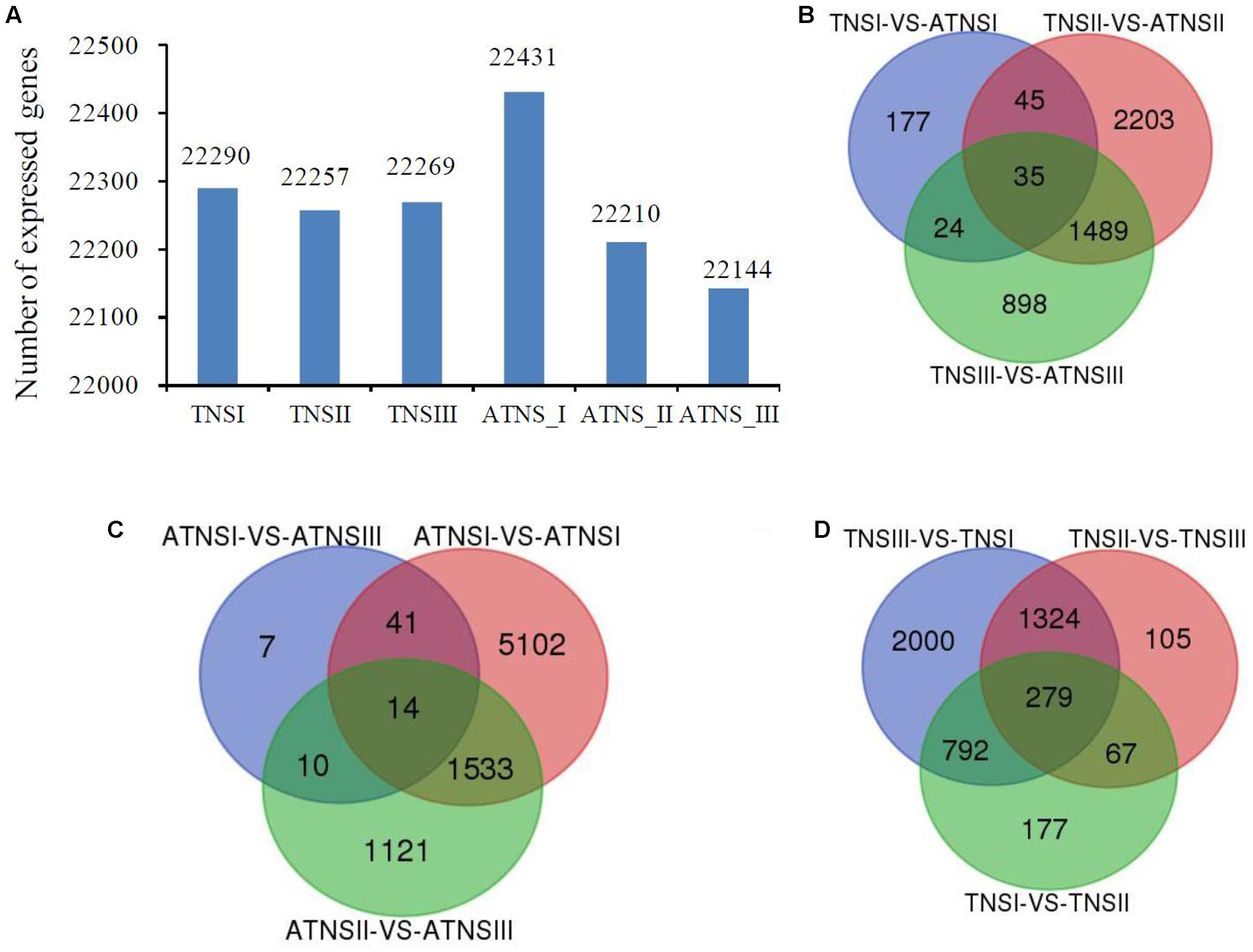 Frontiers transcriptomic analysis reveals candidate genes for frontiersin pooptronica