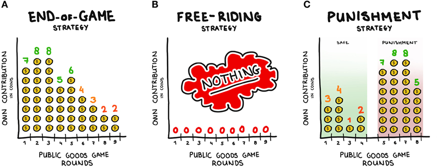 Figure 3 - Some different strategies shown by players in the Public Goods Game.