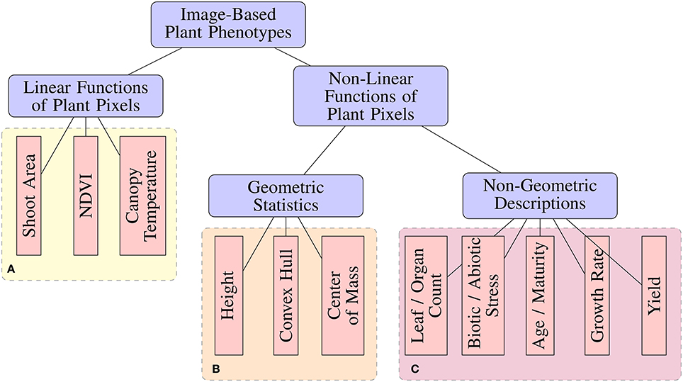 Frontiers | Deep Plant Phenomics: A Deep Learning Platform