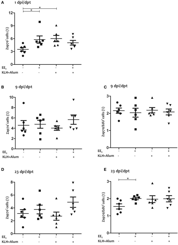 Natural Estrogens On Vitellogenin Production