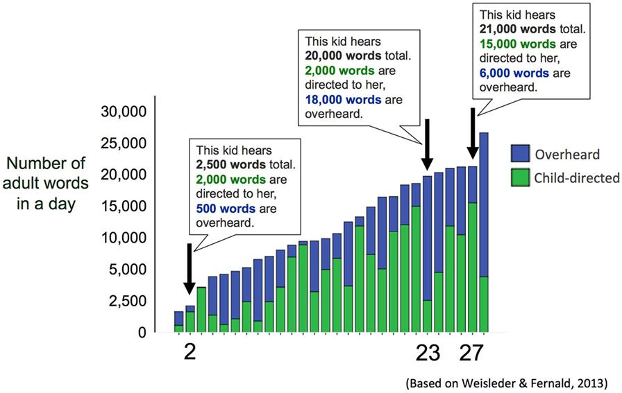 איור 2 - הגרף מראה את מספר המילים שילדים שונים שמעו ממבוגרים ביום אחד.