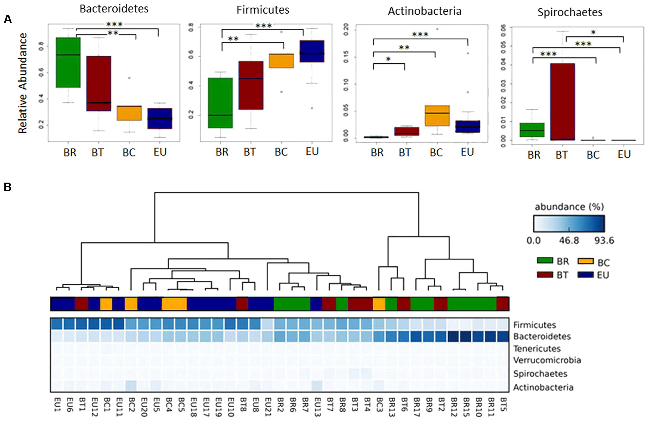 Frontiers | Diet, Environments, and Gut Microbiota  A Preliminary