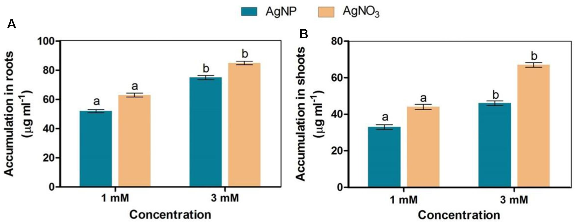 Frontiers   Differential Phytotoxic Impact of Plant Mediated