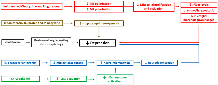 immune system activation in depression
