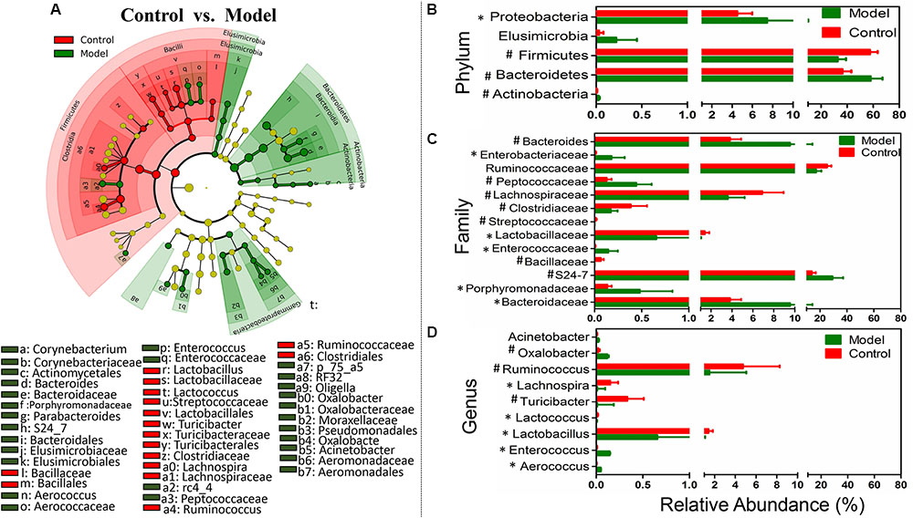 Frontiers | Modulation of Gut Microbiome Composition and