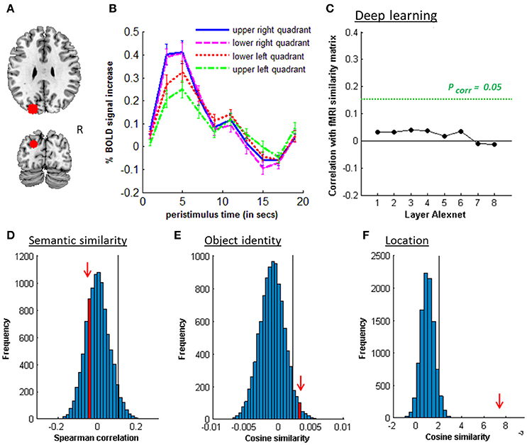 Frontiers | Representation of Semantic Similarity in the
