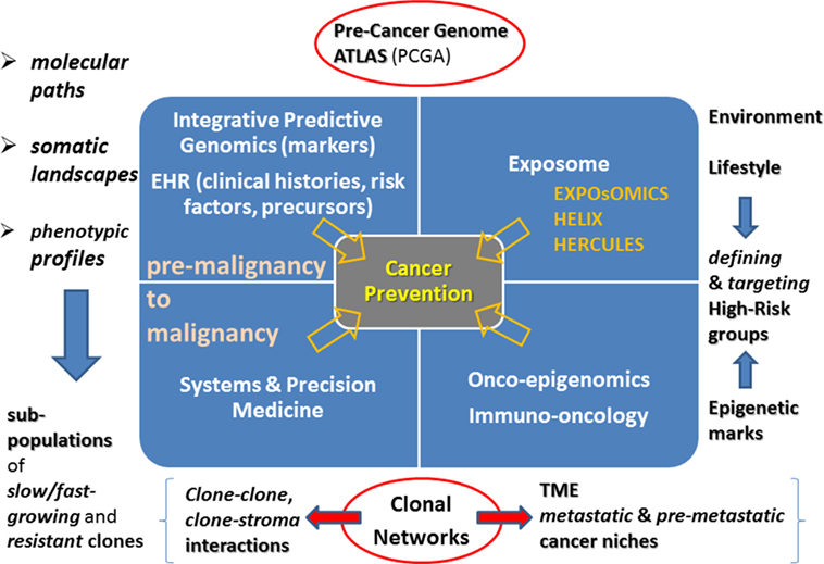Frontiers | Precision Oncology: The Promise of Big Data and