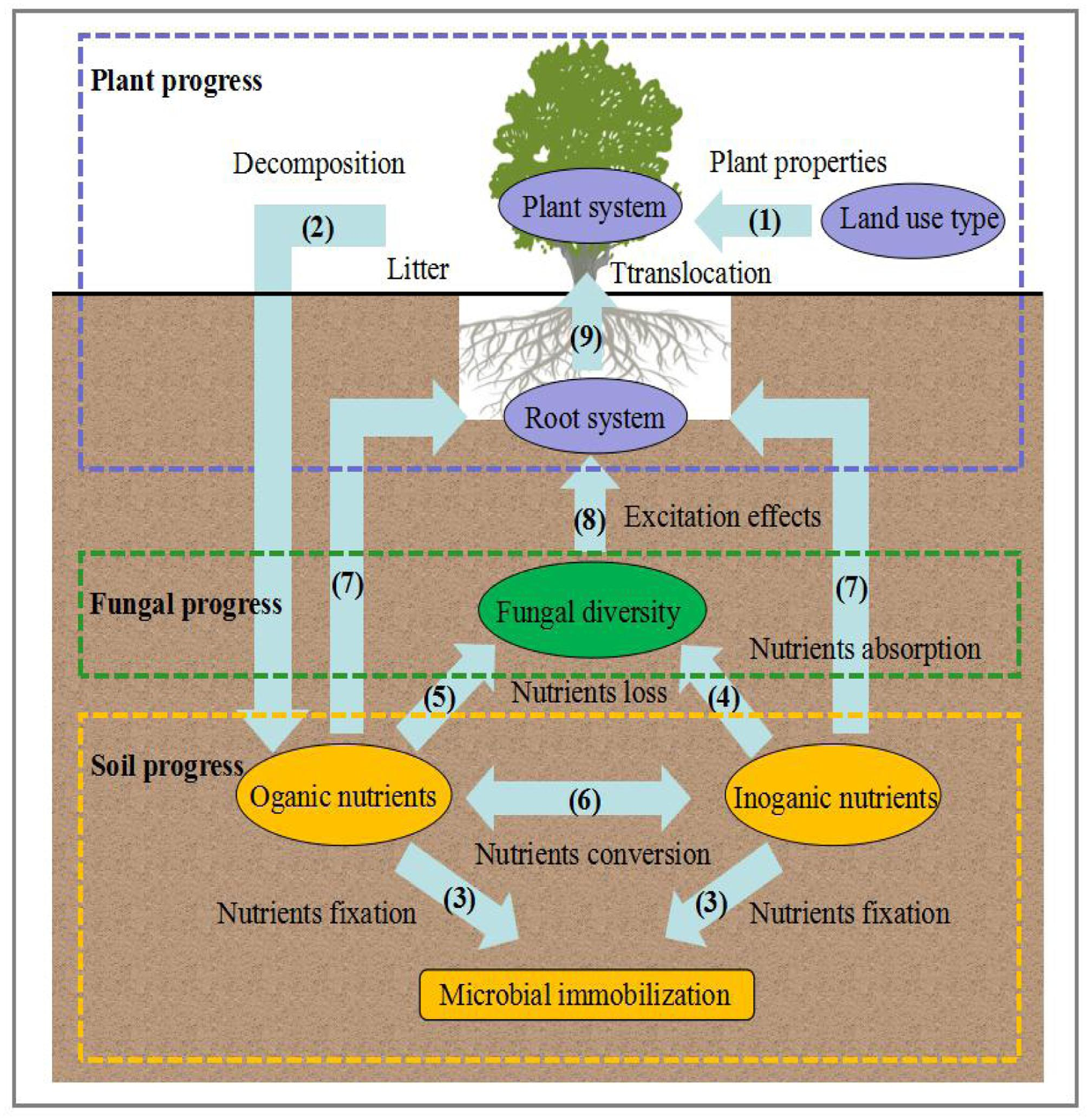 the ecology of soil decomposition adl s m