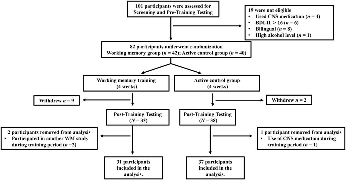 Frontiers | Training of Verbal Working Memory at Sentence