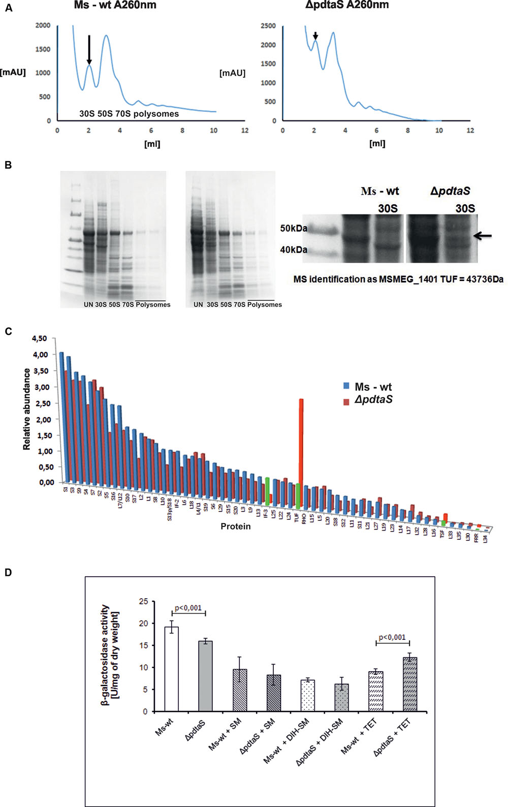 Frontiers Pdtas Deficiency Affects Resistance Of Mycobacteria To Likewise Worm Drive Diagram On Vector Alternating Current