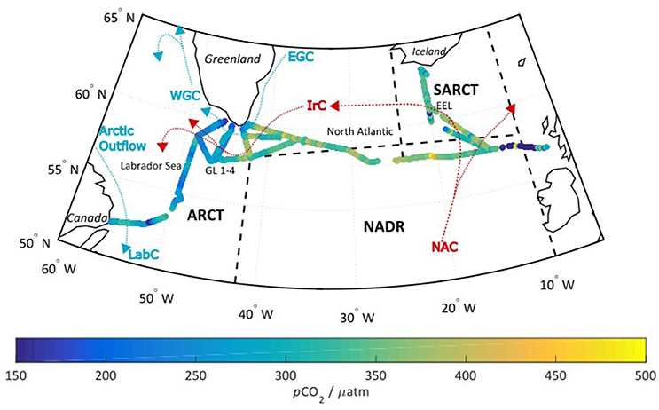 Frontiers | Characterization of a Time-Domain Dual Lifetime
