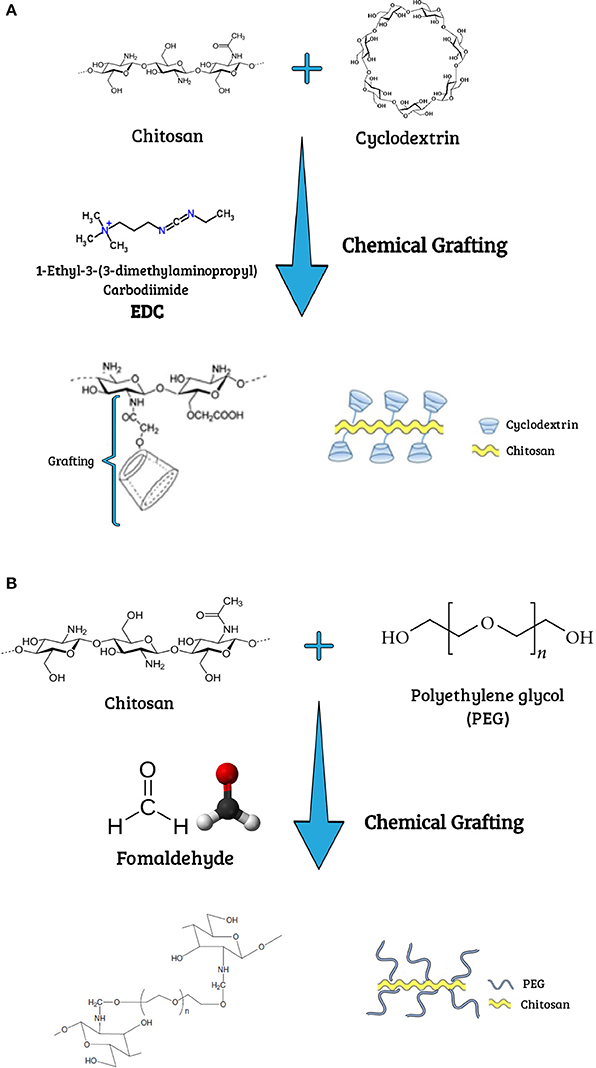 Frontiers | Poly(ethylene glycol) and Cyclodextrin-Grafted ...