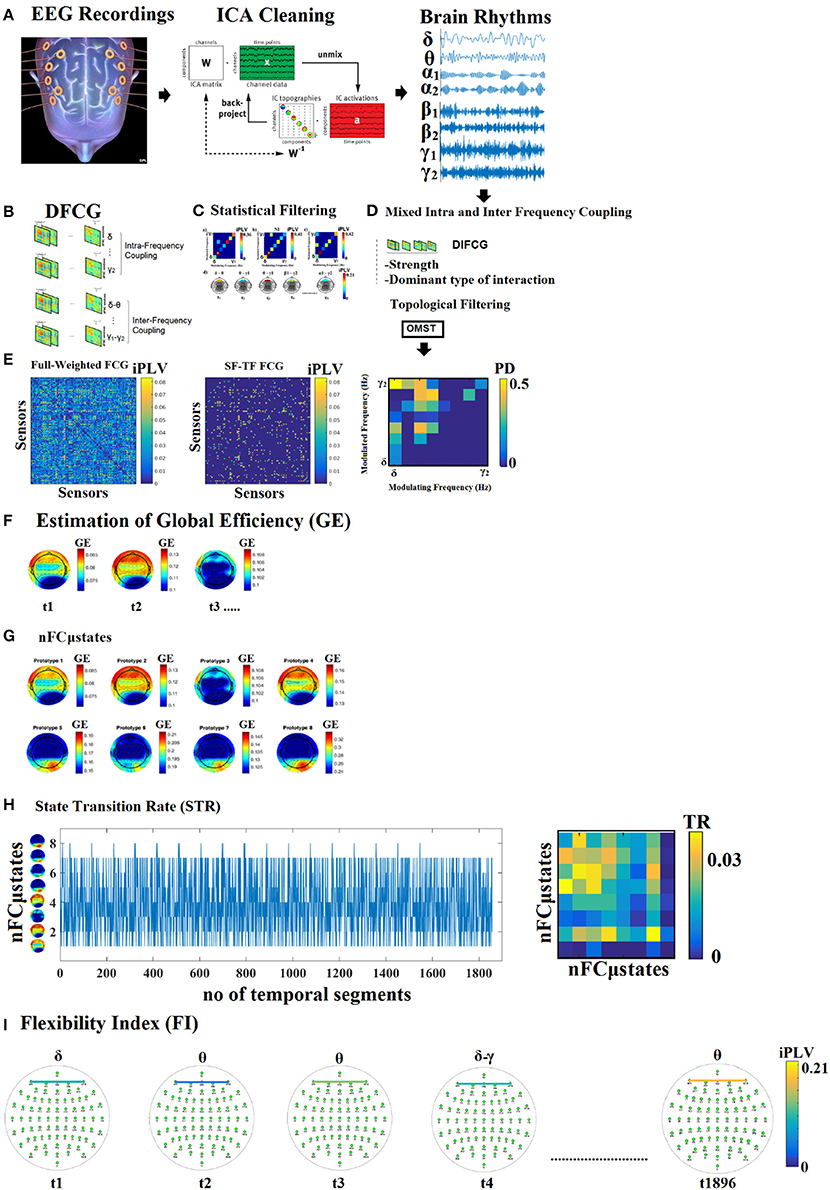 Frontiers | Mining Time-Resolved Functional Brain Graphs to