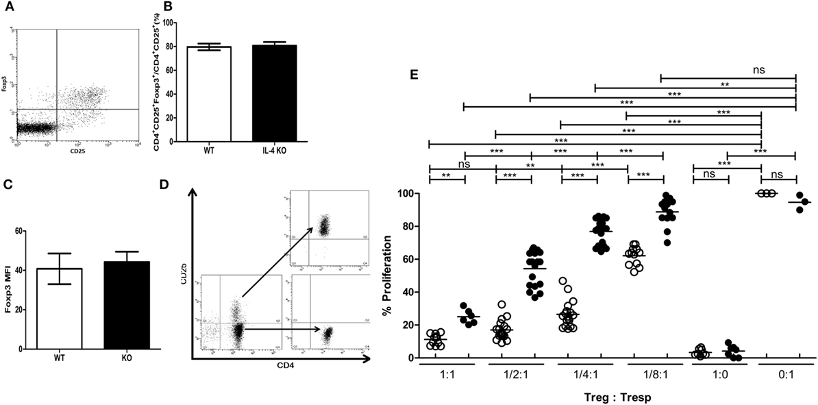 Frontiers Interleukin 4 Supports The Suppressive Immune Responses