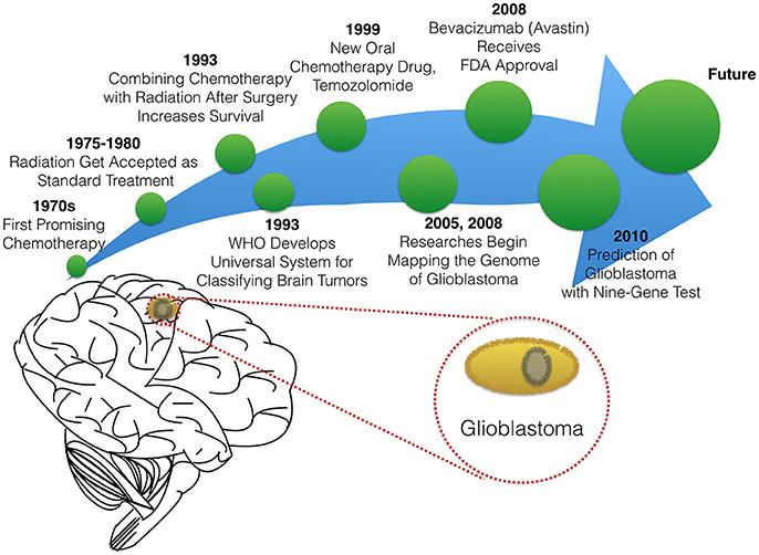 Frontiers | Advances in Glioblastoma Multiforme Treatment: New