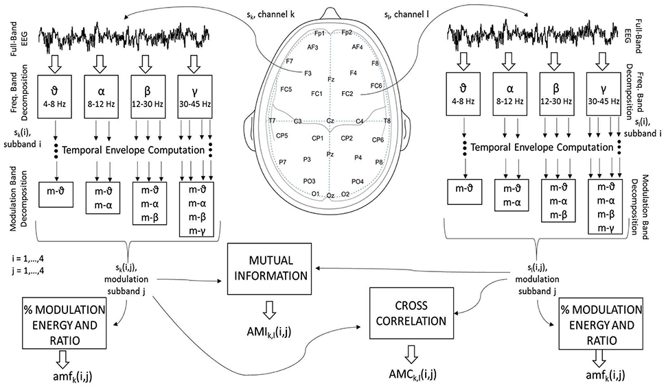 Frontiers | Electroencephalography Amplitude Modulation Analysis for