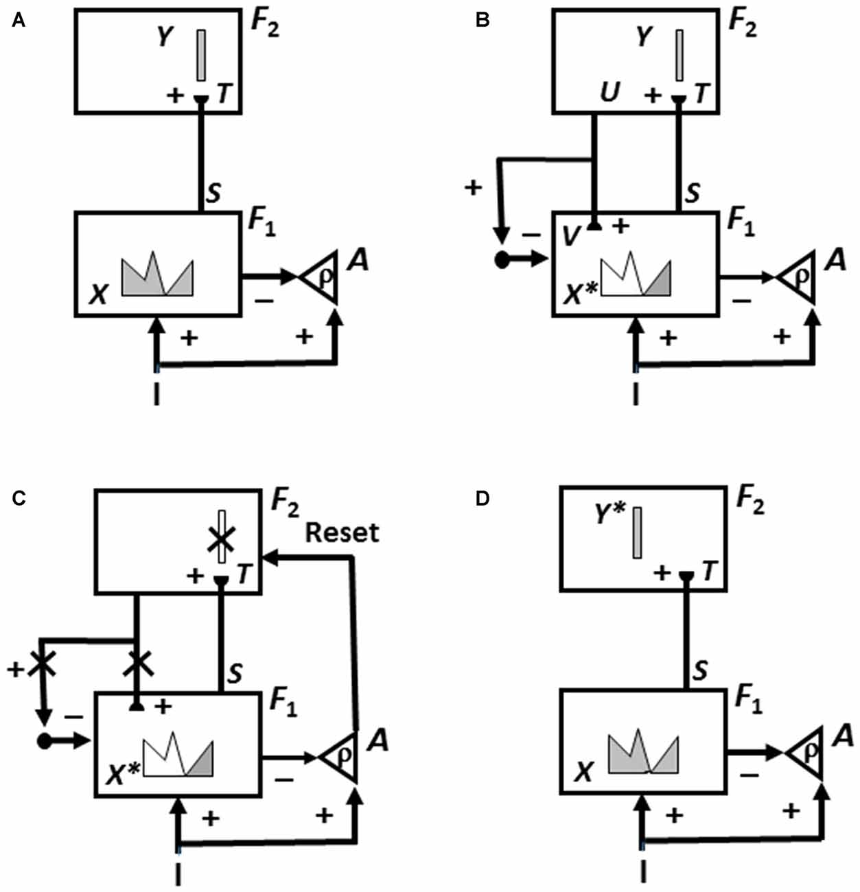 Frontiers Acetylcholine Neuromodulation In Normal And Abnormal 19871989 Gauge Cluster Circuit Board