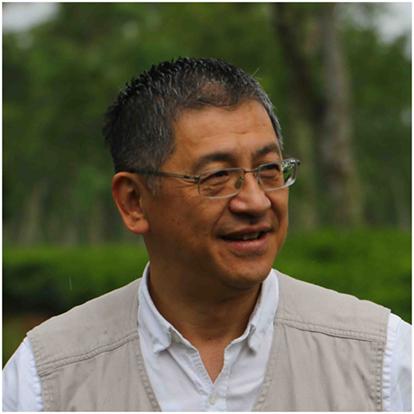 Kentaro Arikawa