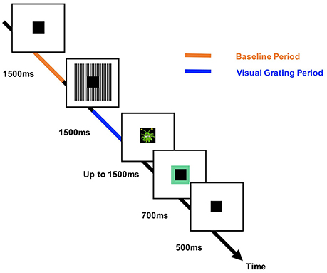 Frontiers | The Detection of Phase Amplitude Coupling during Sensory