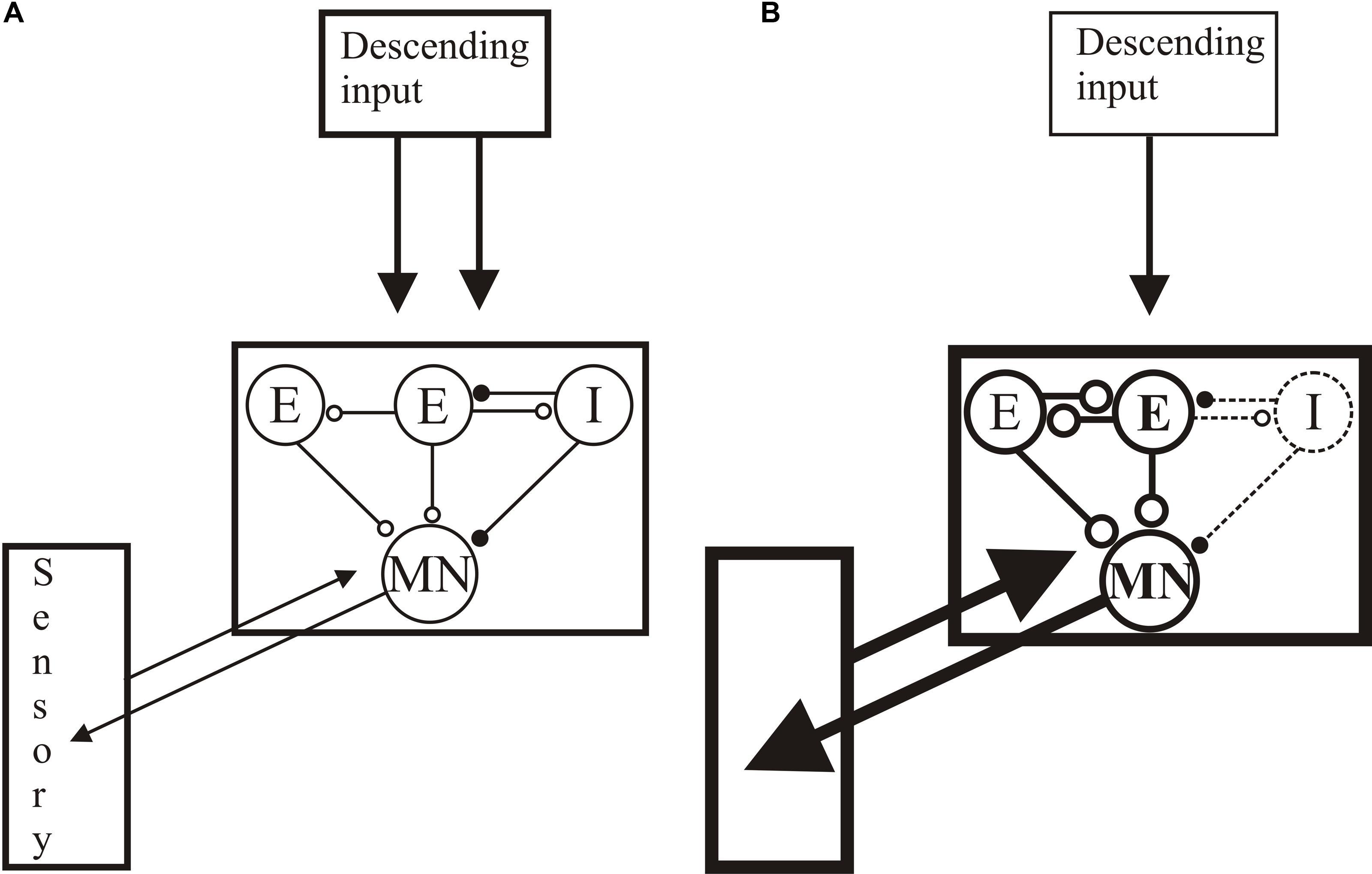 Allison Gen L Wiring Diagram on