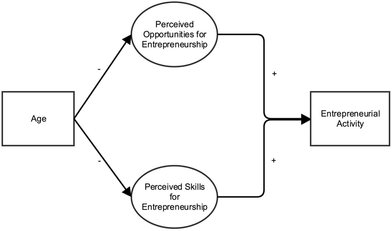 Frontiers | A Lifespan Perspective on Entrepreneurship ...