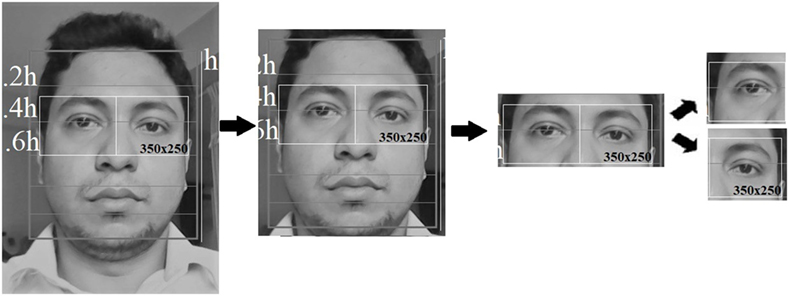 Frontiers | Mobile-Based Eye-Blink Detection Performance Analysis on